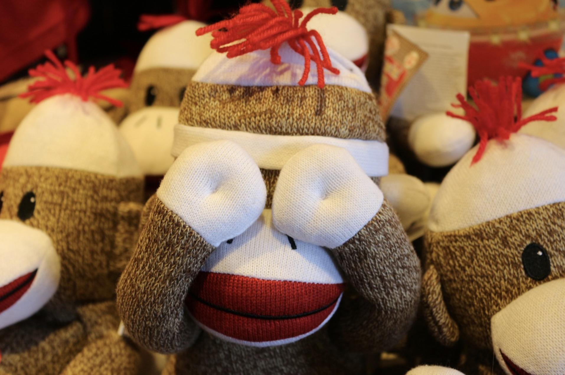 Tears of a Sock Monkey